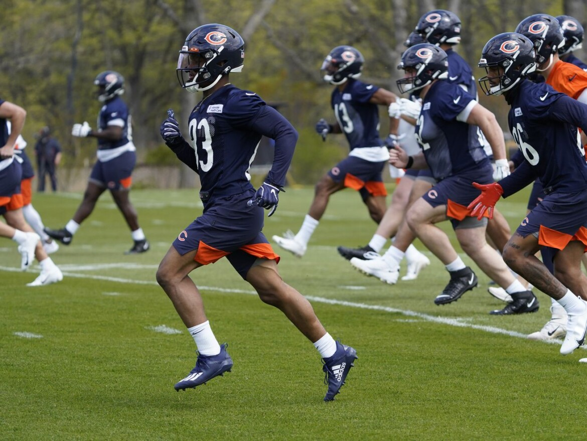 Bears rookie WR Dazz Newsome to have collarbone surgery