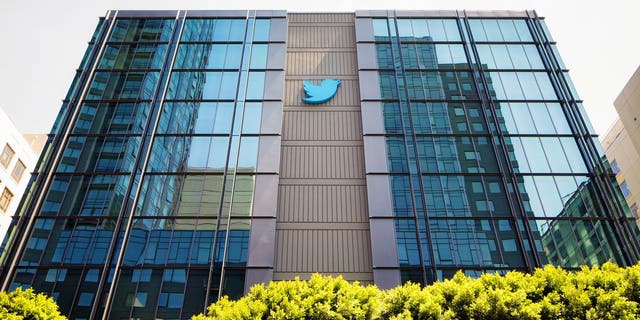 Twitter declares access to its platform a 'human right' amid censorship of conservatives