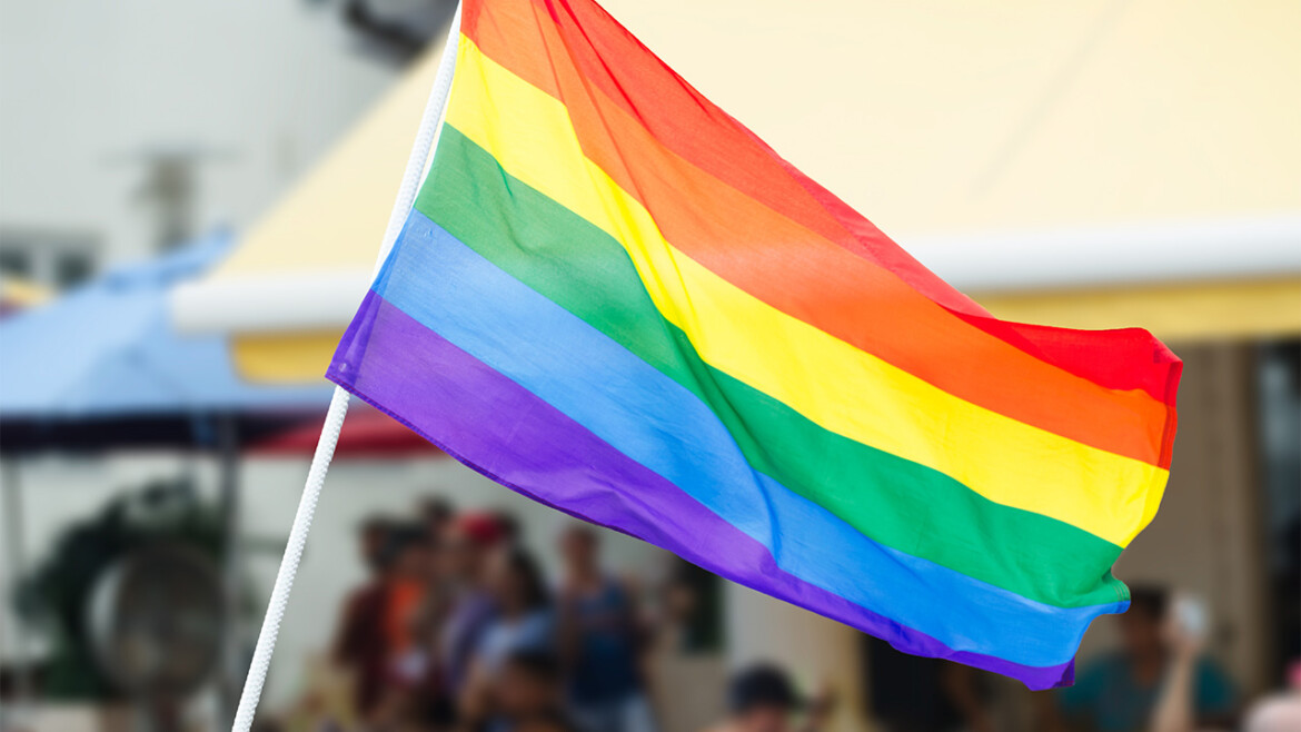 Tammy Bruce: Federal Request to fly gay pride flags at courthouses 'reinforces tribalism'