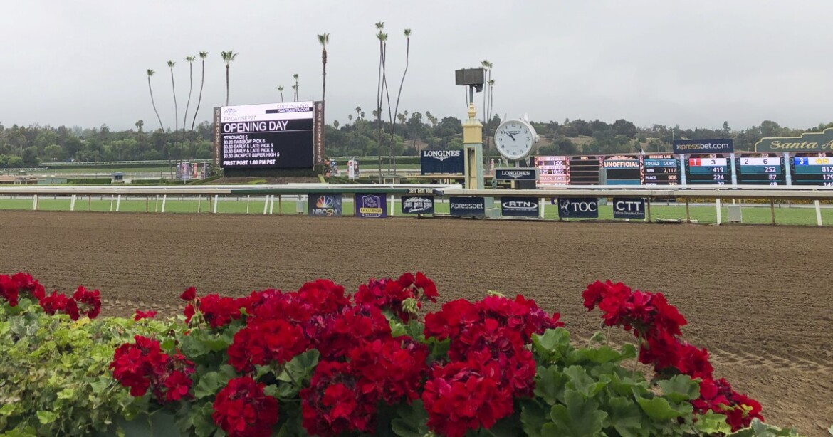 Horse racing newsletter: And now the end is near …