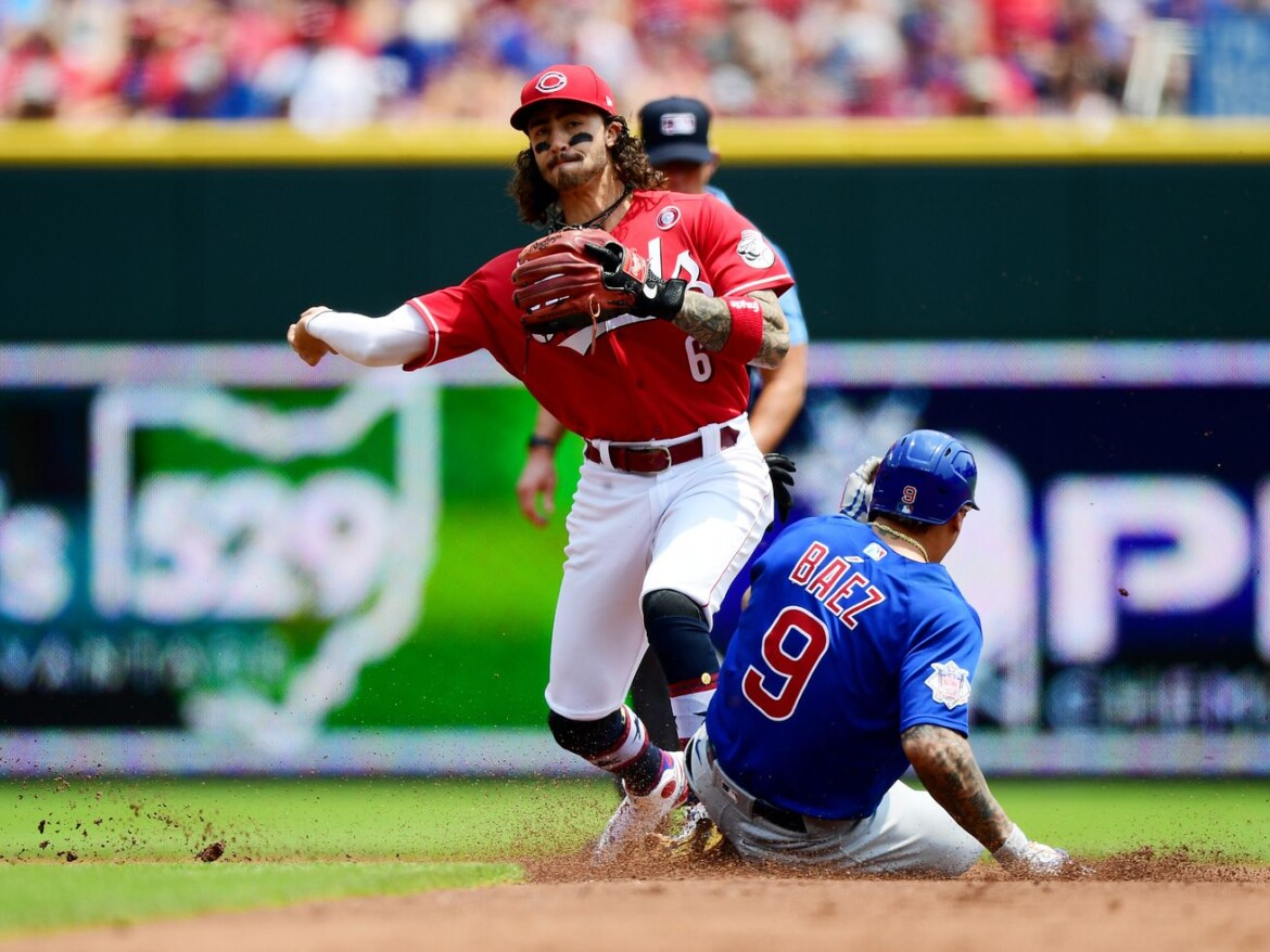White-flag time for the Cubs? Get-well-again time for the White Sox? This You Gotta See