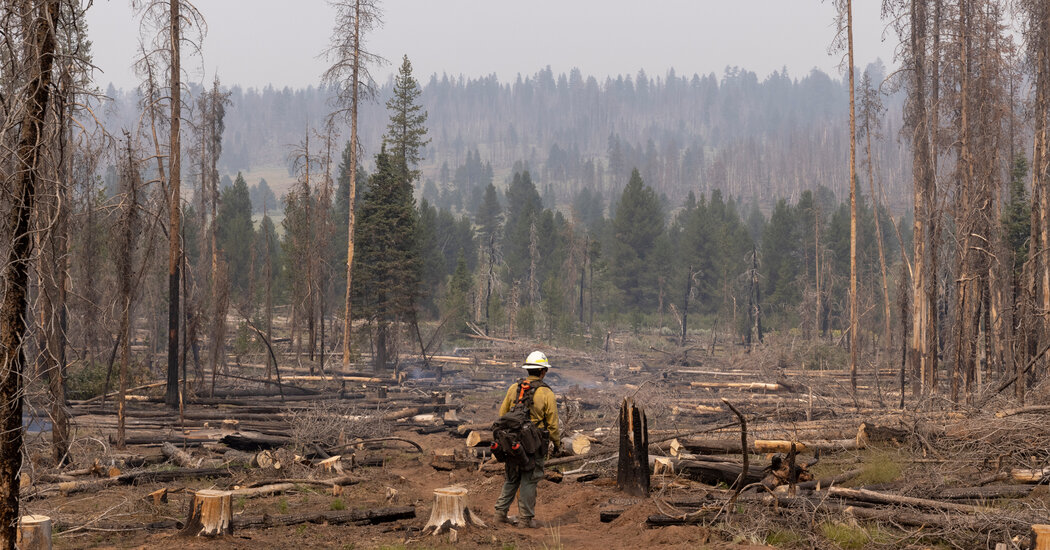 Scenes From America's Largest Wildfire