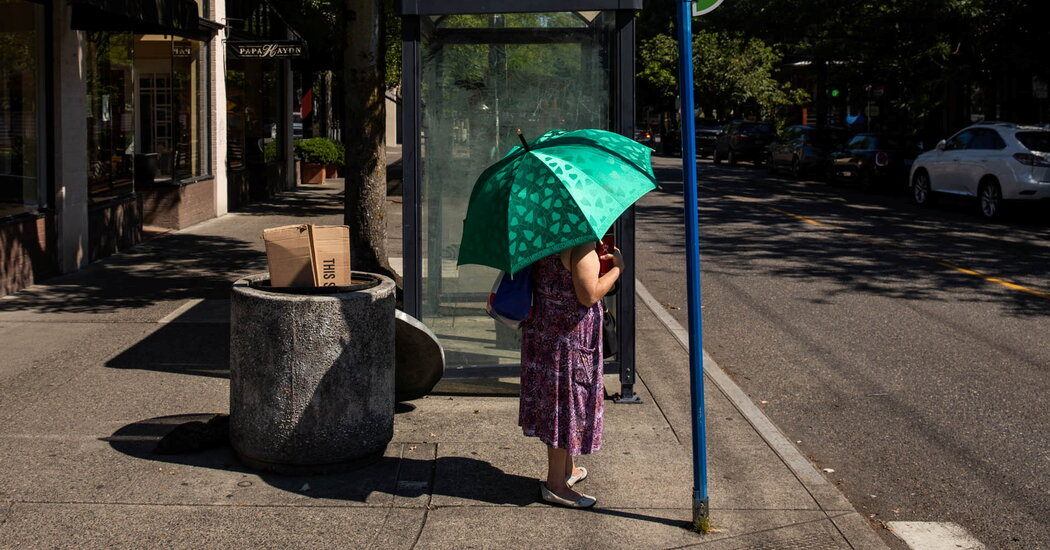 Pacific Northwest Heat Wave Study Predicts More Extreme Heat