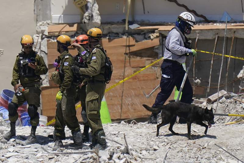 Crews on lookout for pets in Florida condo building collapse