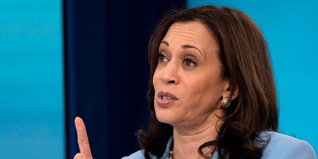 VP Harris talks about multiple assignments from Biden: 'Maybe I don't say 'no' enough'