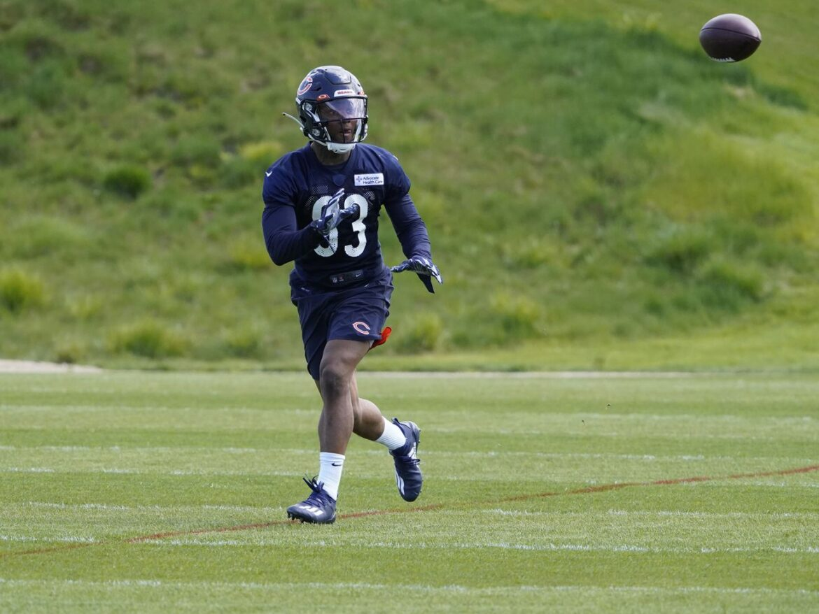 Bears WR Dazz Newsome eager to get started