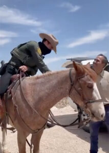 George P. Bush pushes back on WH whipping narrative, shares video of Border Patrol horses without 'whips'