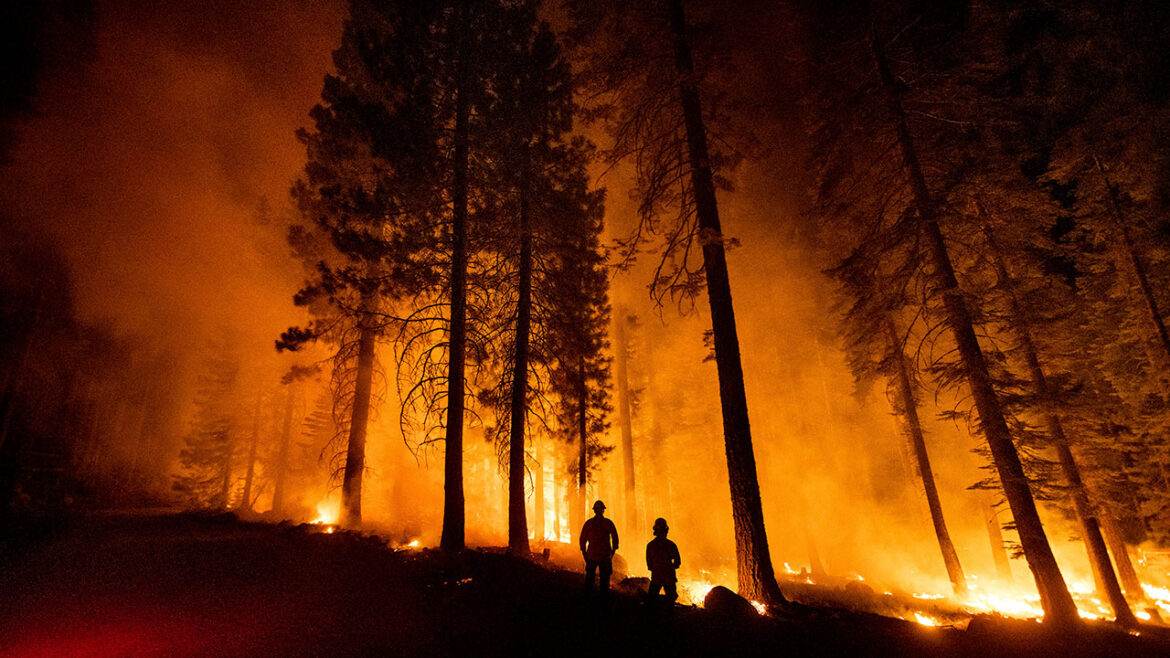 How federal regulation, not climate change, explains California's wildfire crisis: experts